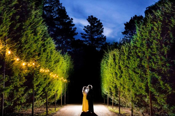 Seclusions Wedding Blue Mountains